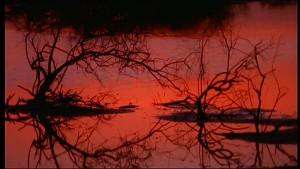 tramonto senegal