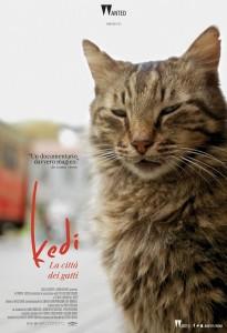 Locandina Kedi